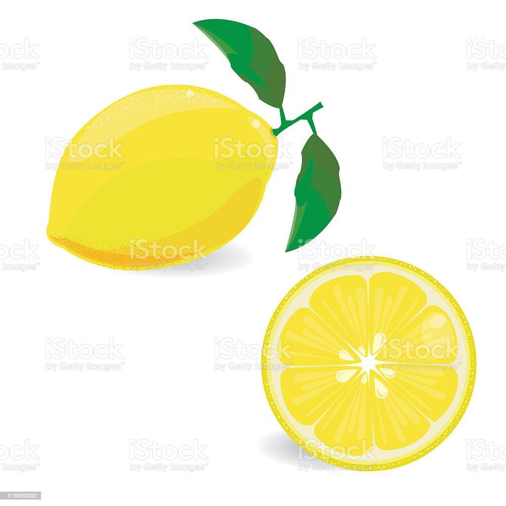 Lemon fruit vector art illustration