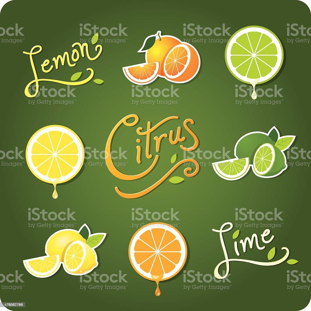 Lemon, Lime and Citrus fruit vector art illustration