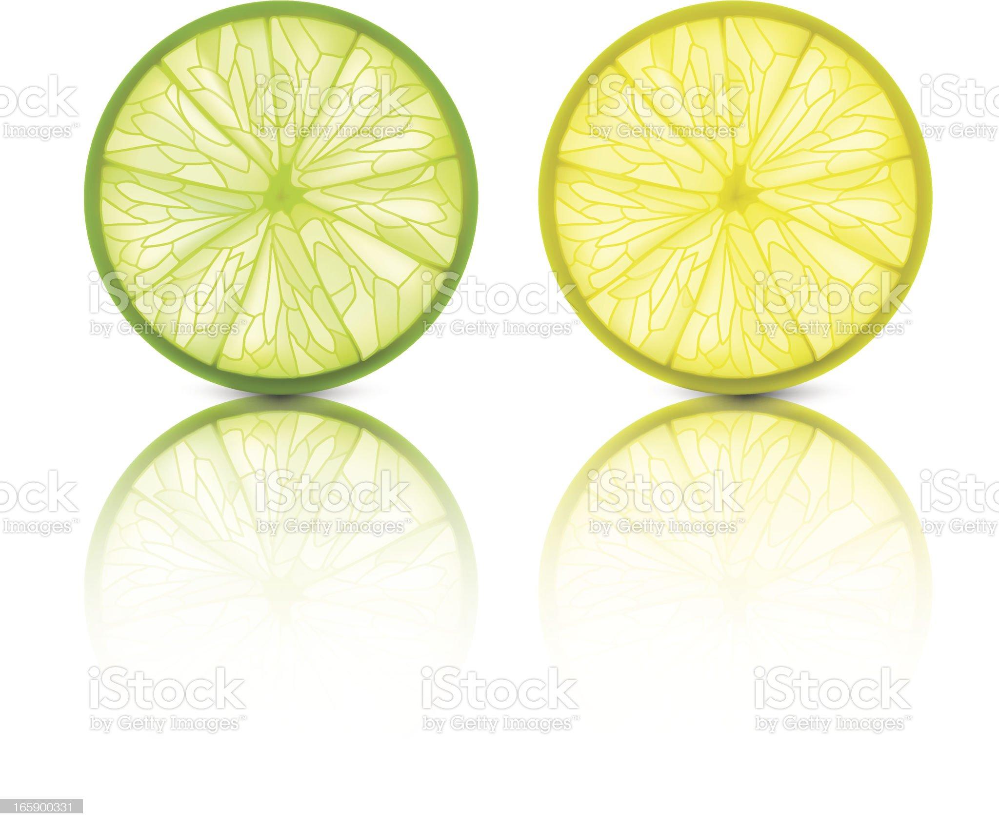 Lemon Lime - Vector Illustration royalty-free stock vector art