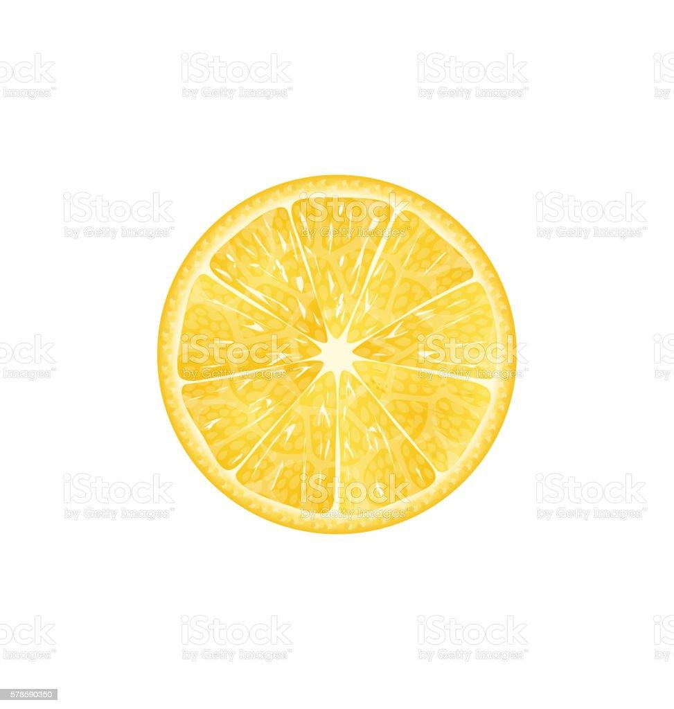 Lemon Slice Isolated vector art illustration