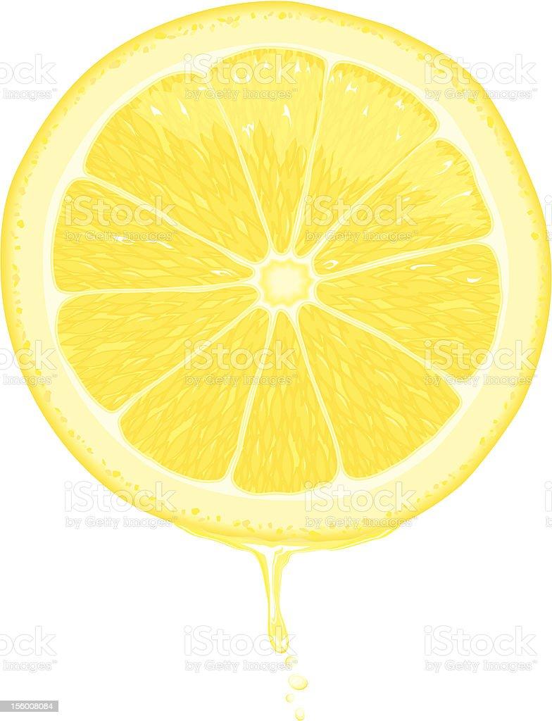 Lemon Slice vector art illustration