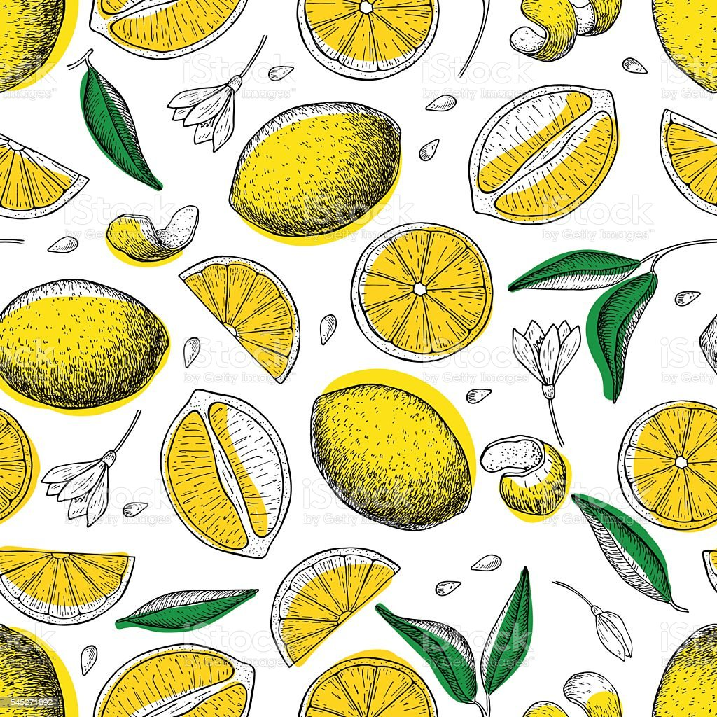 Lemon vector seamless pattern. Drawing lemon colorful background vector art illustration