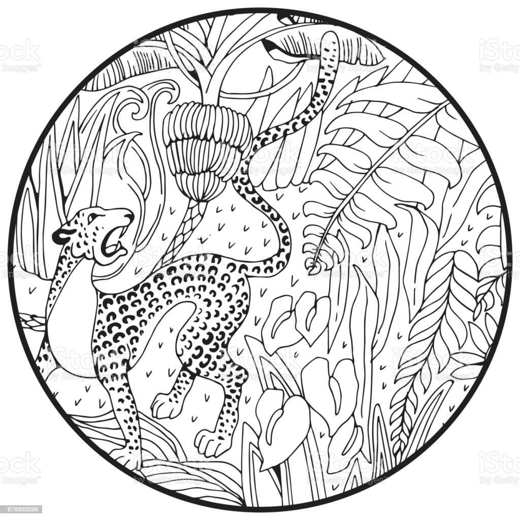 Leopard In The Jungle Coloring Page Exotic Flowers And Wild Animals Royalty