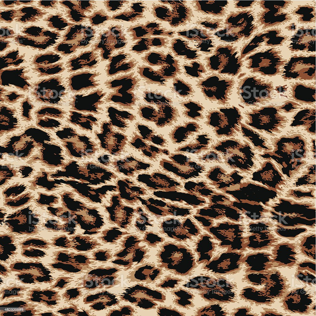 Leopard print vector art illustration