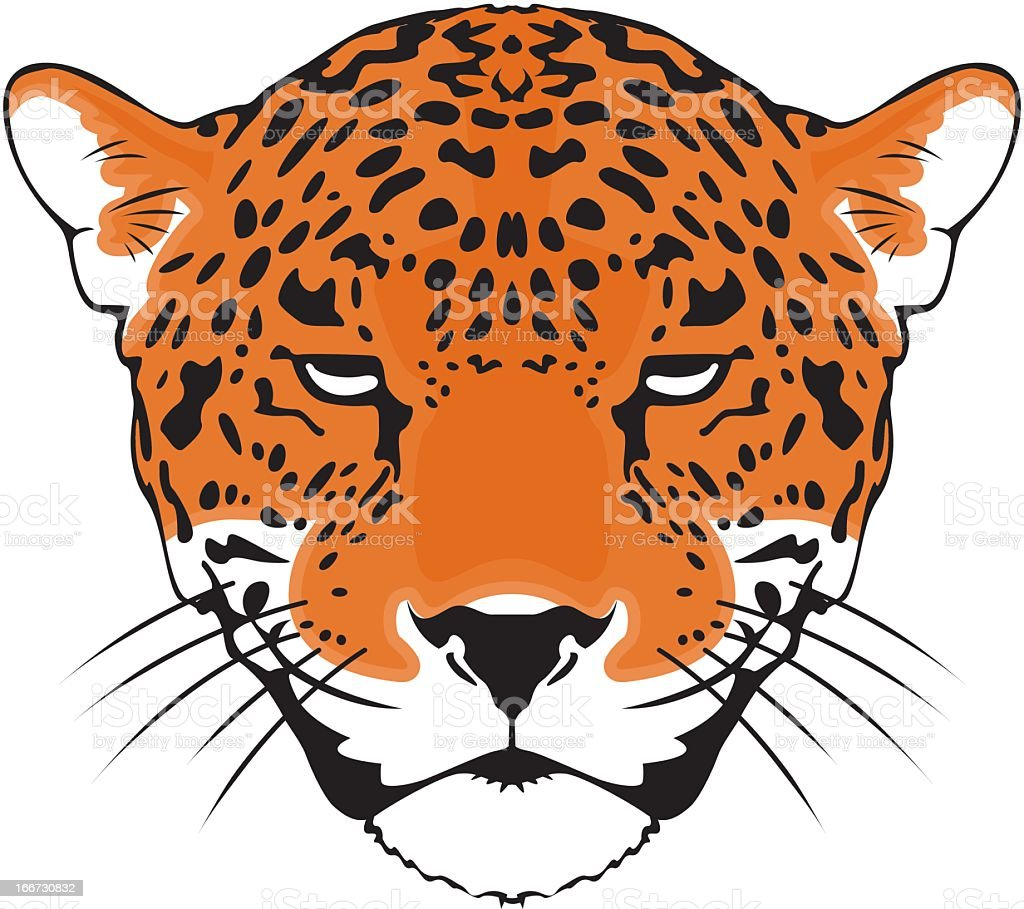 Leopard royalty-free stock vector art