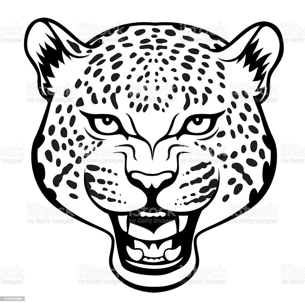 Line Drawing Face Vector : Leopard stock vector art istock