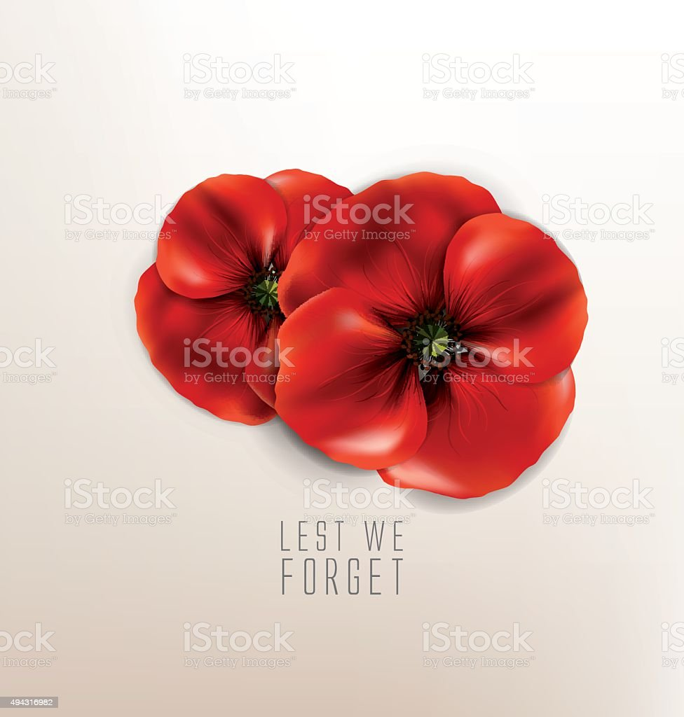 lest we forget - remembrance day vector art illustration