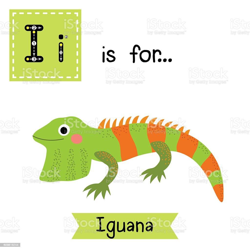 Iguana Craft For Preschool