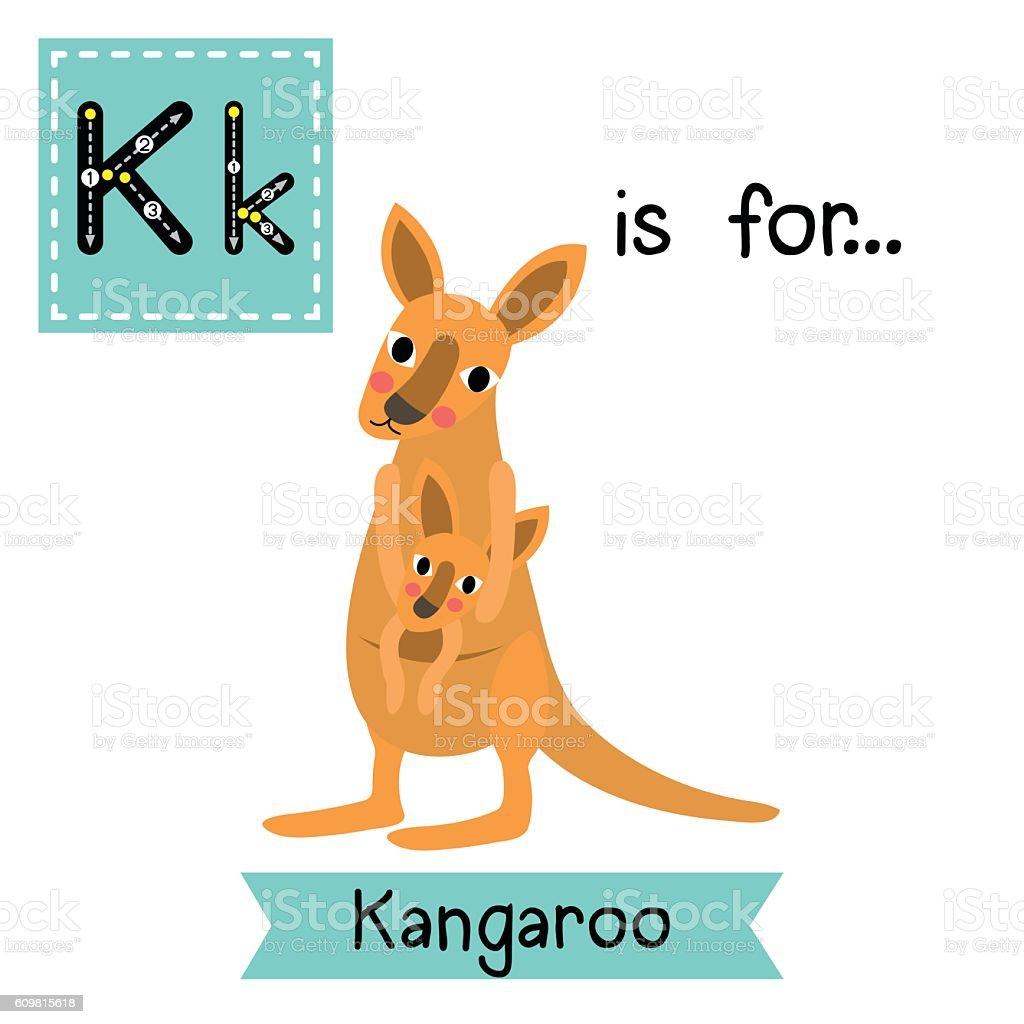 Letter K tracing. Kangaroo and baby kangaroo. vector art illustration