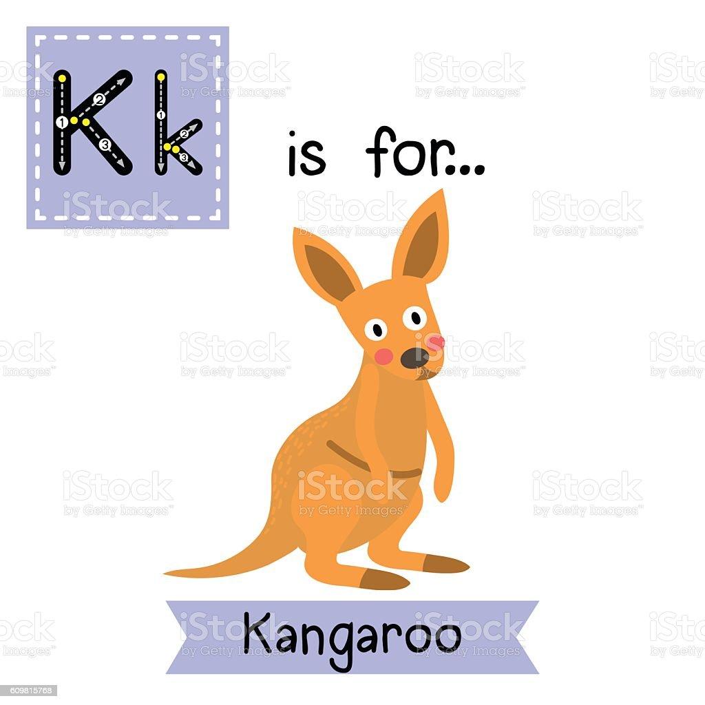 Letter K tracing. Kangaroo. vector art illustration