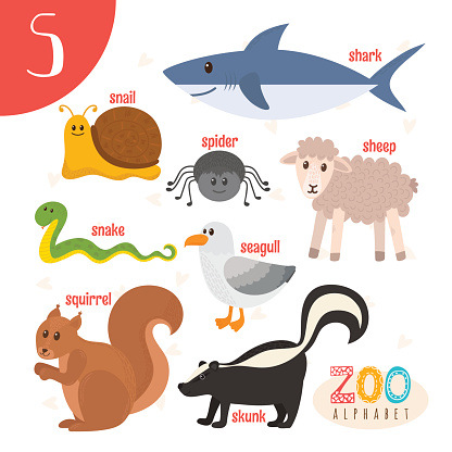 A-Z animal listings organised alphabetically with pictures. A-Z animal listings organised alphabetically. A-Z Animals, an online animal encyclopedia where you can learn about all your favourite animals, and even some you may have never heard of!