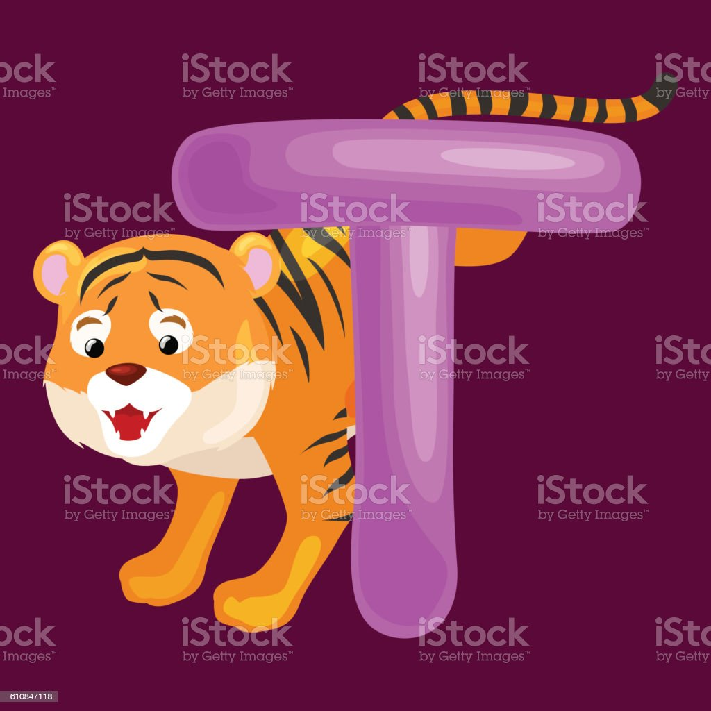 letter t with tiger animal for kids abc education in stock vector