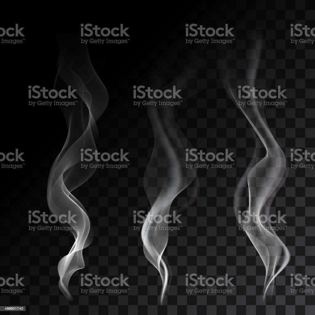 Light cigarette smoke waves on transparent background vector illustration vector art illustration