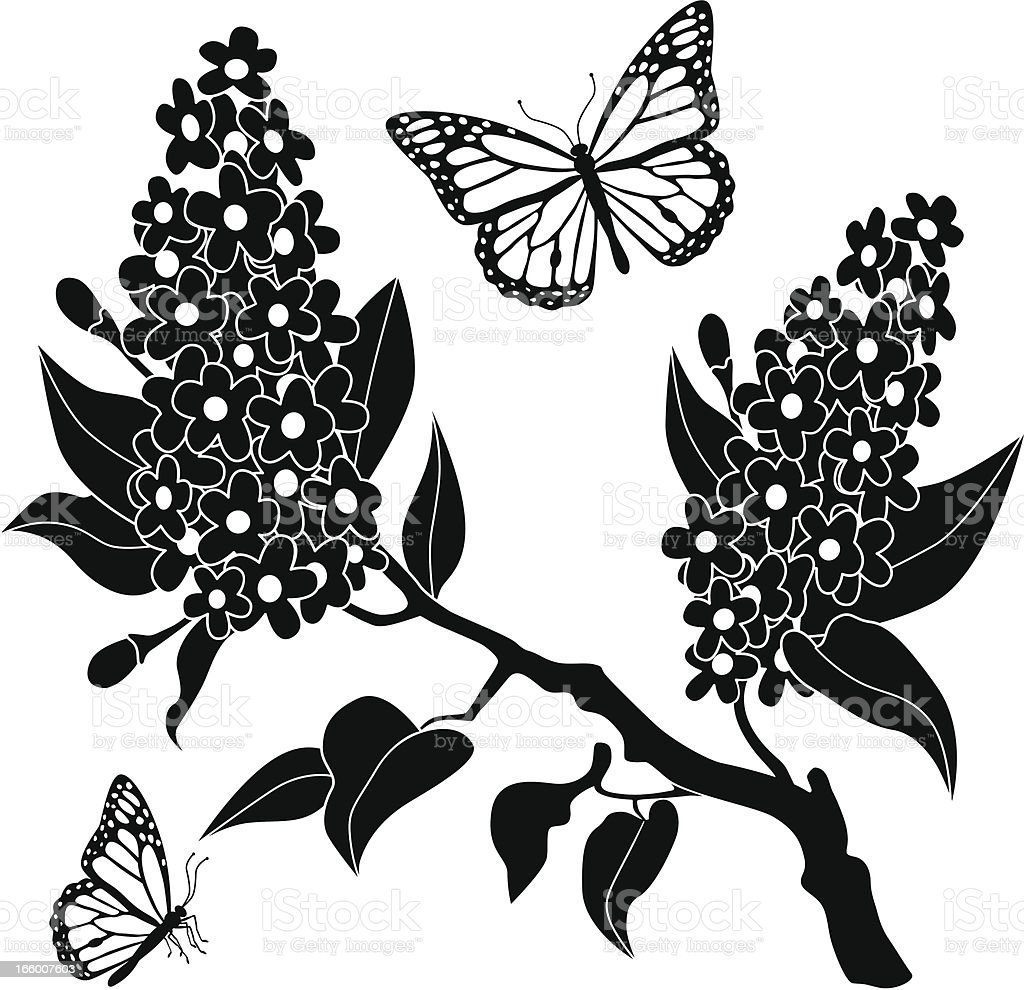 lilacs and monarch butterflies royalty-free stock vector art