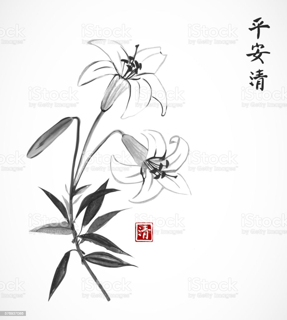 Lily flowers on white background vector art illustration