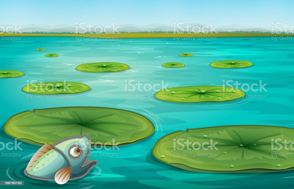 Lily pads royalty-free stock vector art