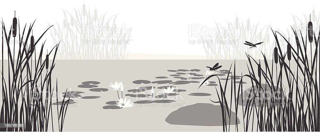 Pond Silhouette