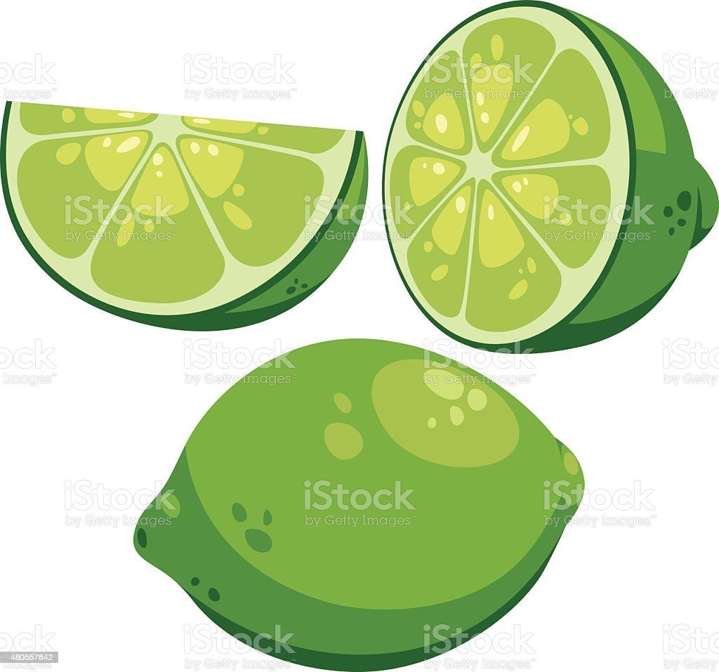 Lime Cartoon vector art illustration