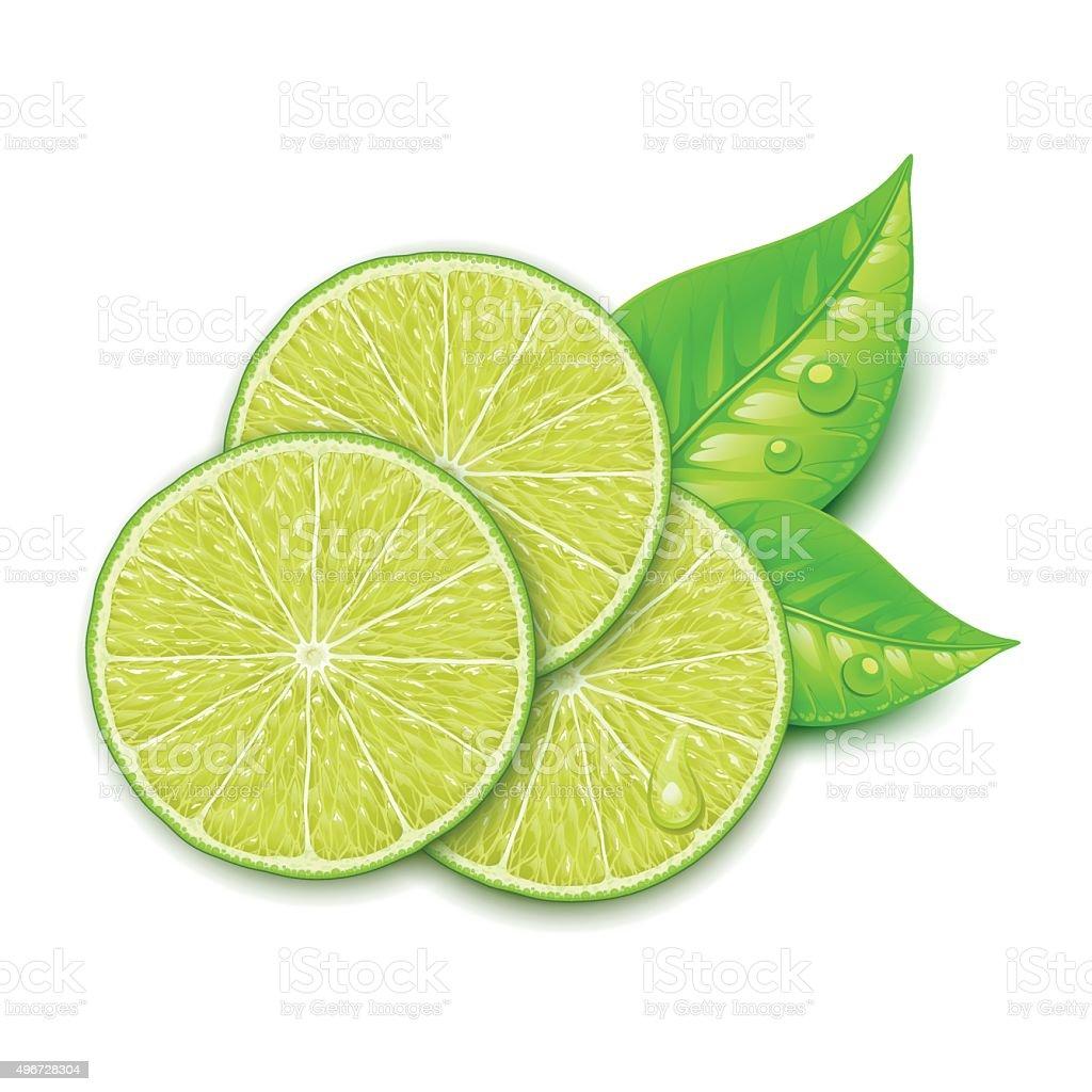 lime slice vector art illustration