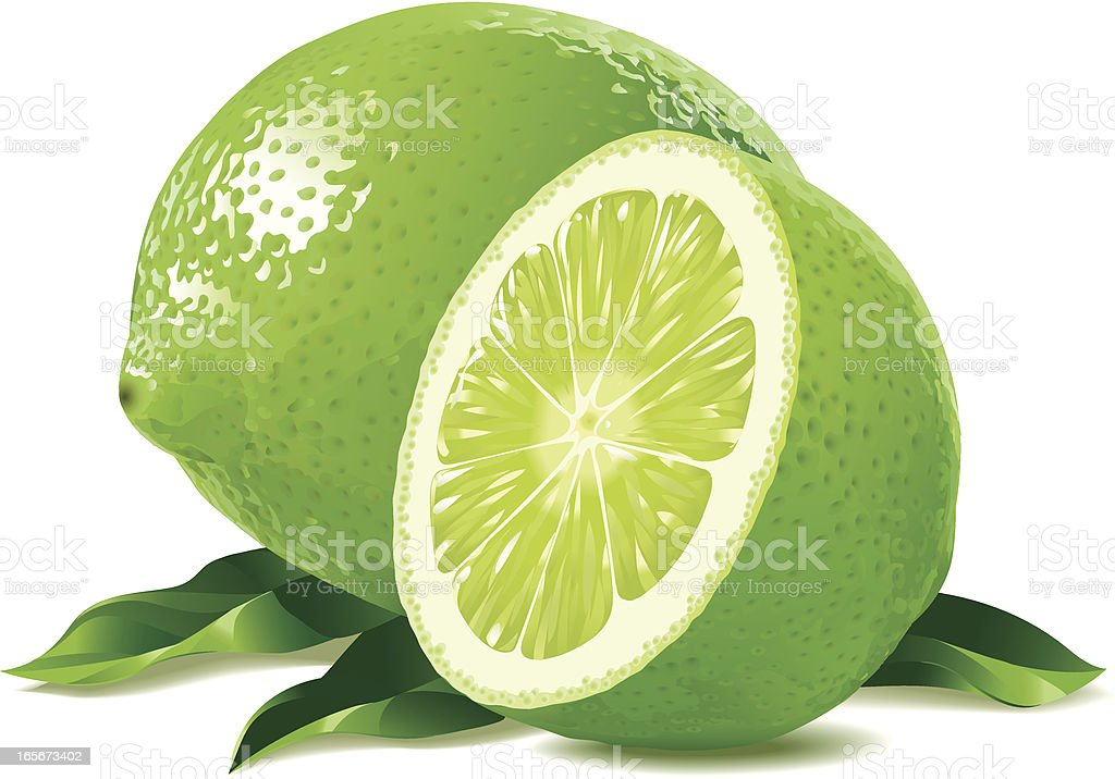 Lime with Leaves vector art illustration