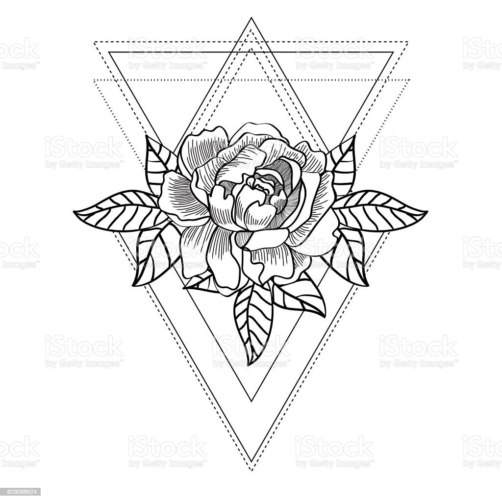 Line Art Design Geometry : Line drawing of a rose with geometric shapes stock vector