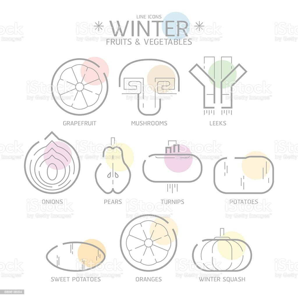 Line Icons Winter Fruits and Vegetables with Colour Spot,Vector vector art illustration