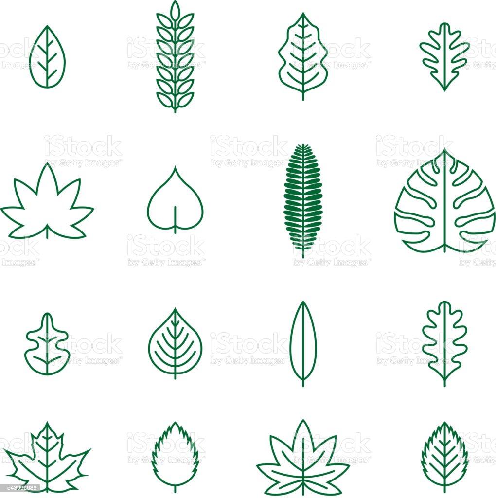Line Leaf Icon Set vector art illustration