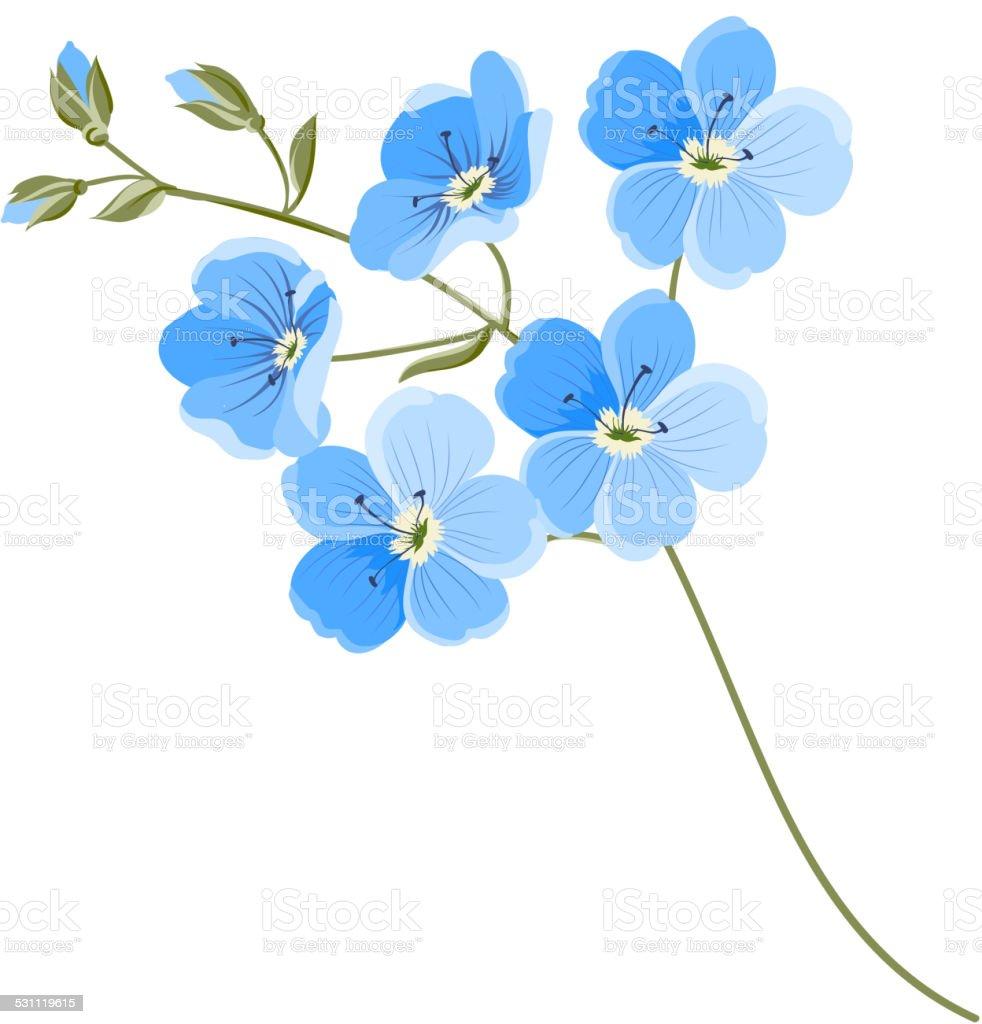Linen flower vector art illustration