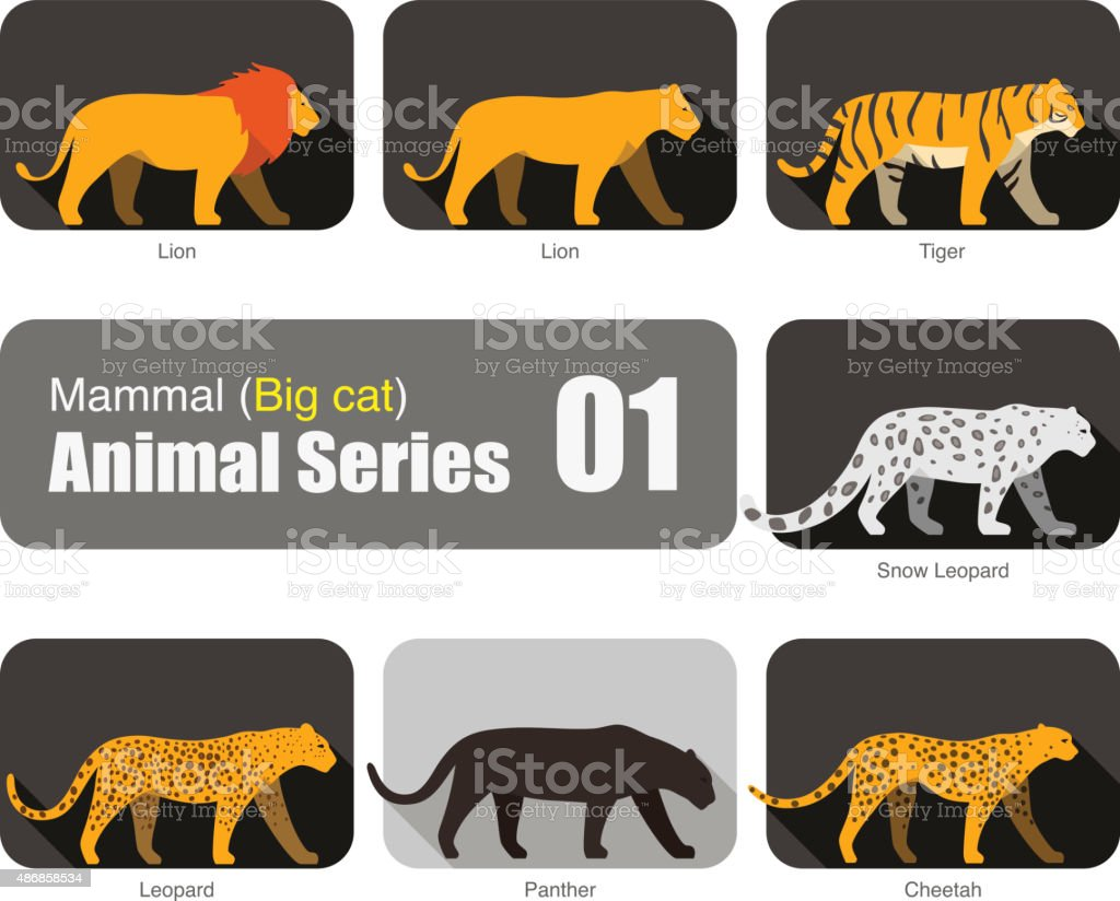 Lion and big cat animal cartoon silhouette collection vector art illustration