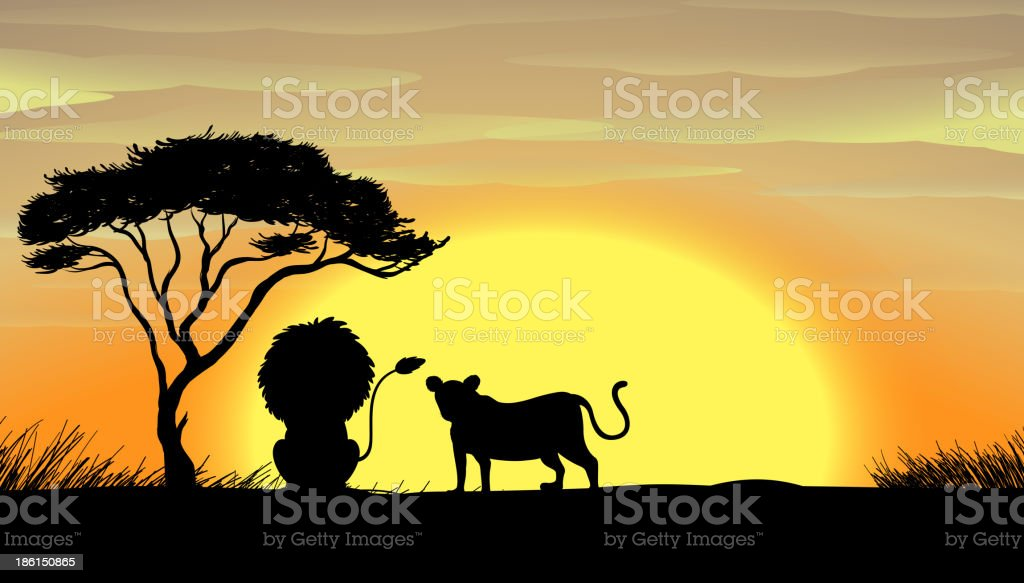 lion and tiger under a tree royalty-free stock vector art