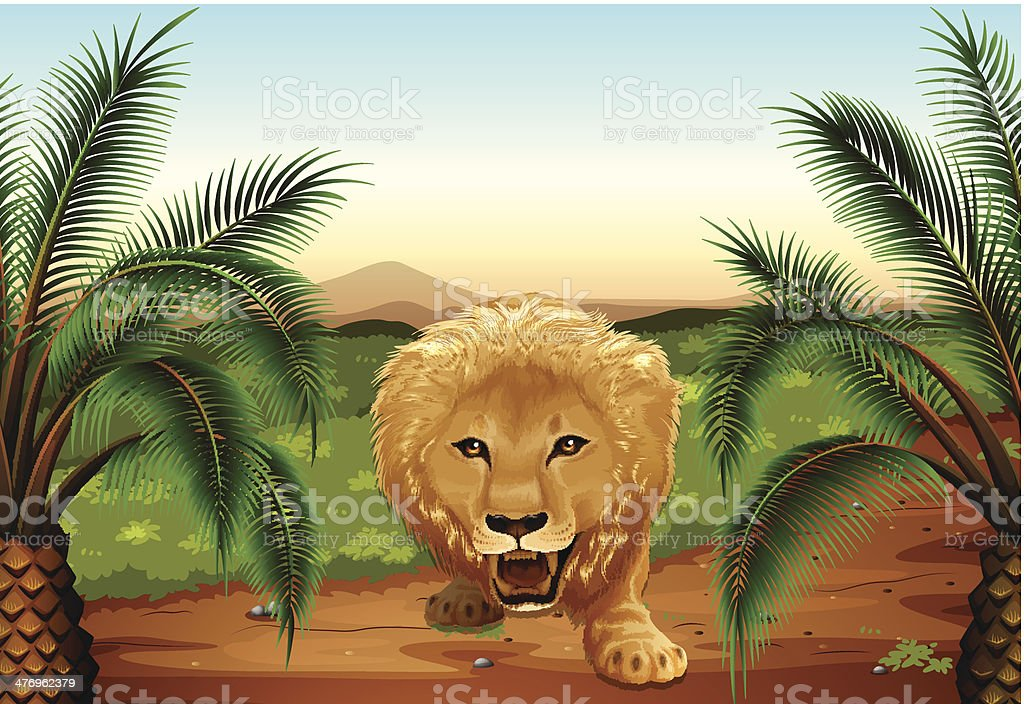 lion at the jungle vector art illustration