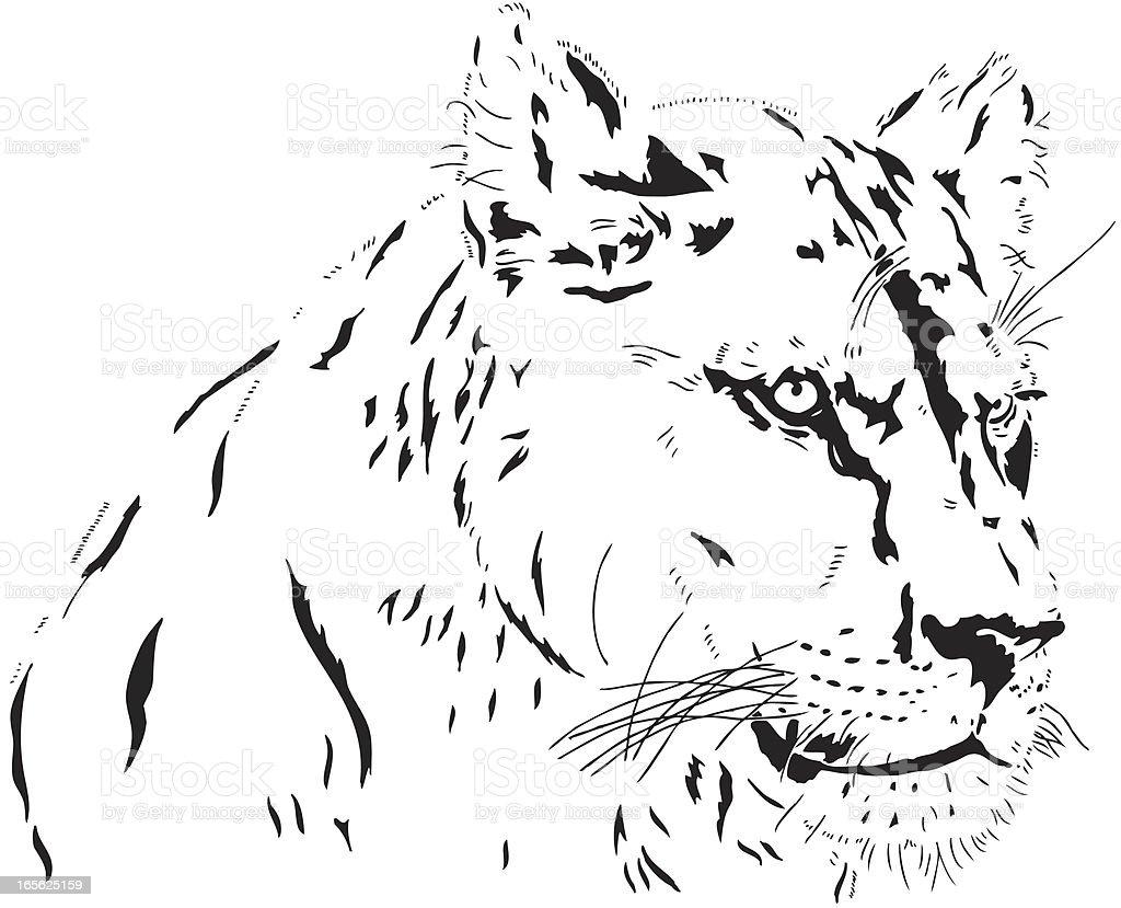 Lion female illustration royalty-free stock vector art