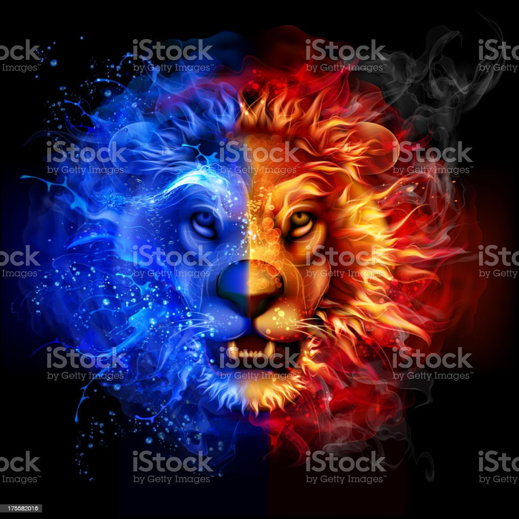 Lion from fire and water vector art illustration
