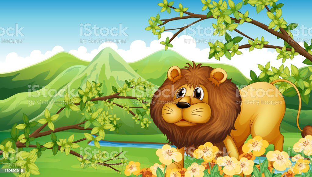 Lion in a green mountain area royalty-free stock vector art