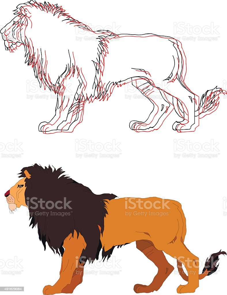 Lion king. Vector isolated animal. vector art illustration