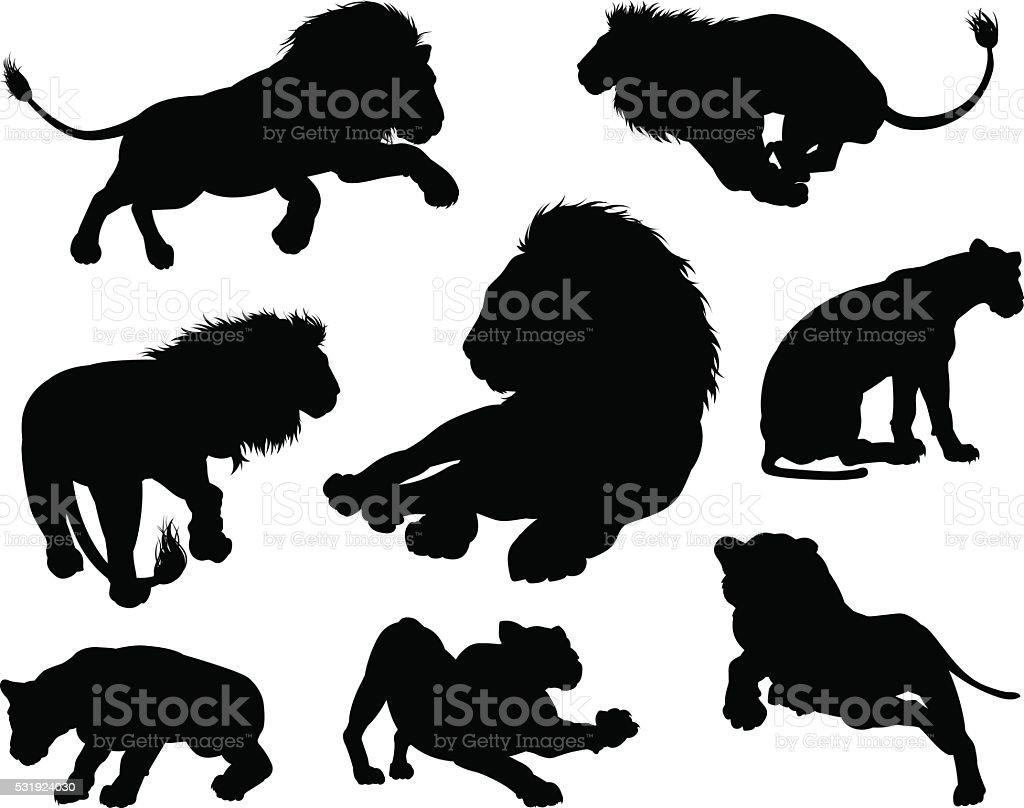 Lions Silhouettes vector art illustration