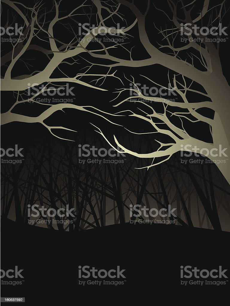 Lit forest canopy at night royalty-free stock vector art