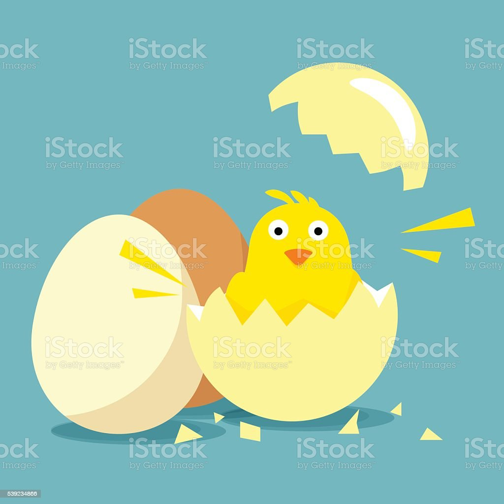 Little chick hatched out of egg vector art illustration