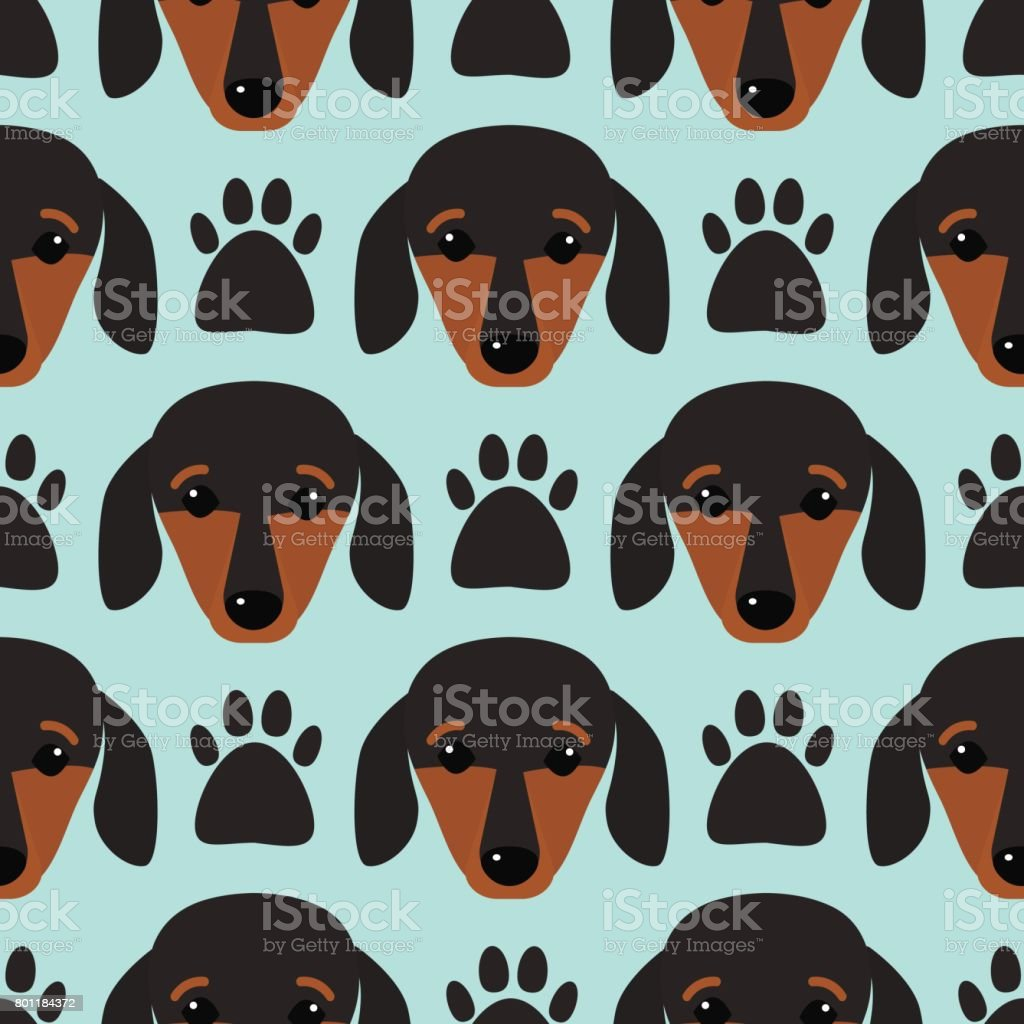 Little dachshund puppy head seamless pattern dog young pedigreed animal breed vector illustration vector art illustration