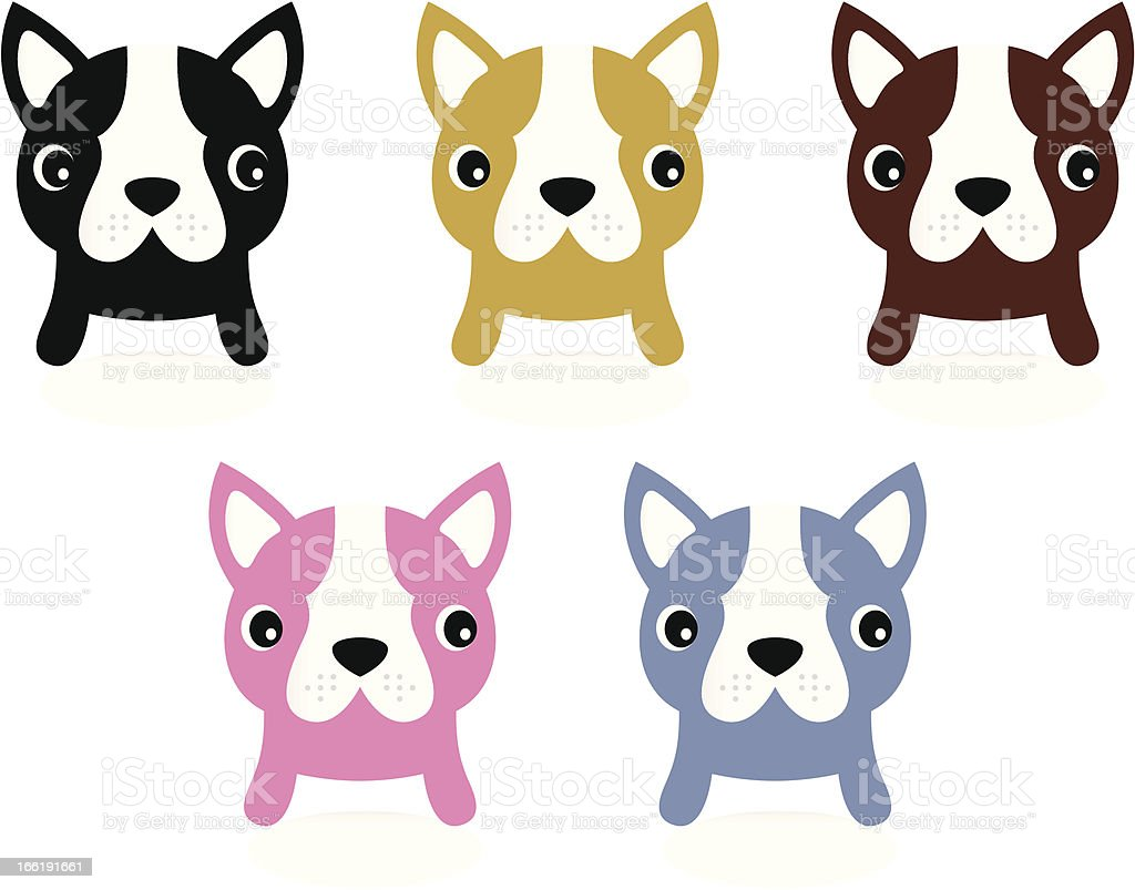 Little french buldog puppies set isolated on white royalty-free stock vector art