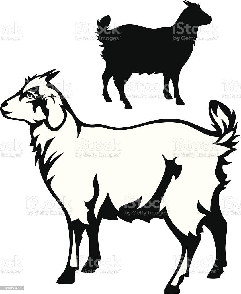 little goat vector art illustration