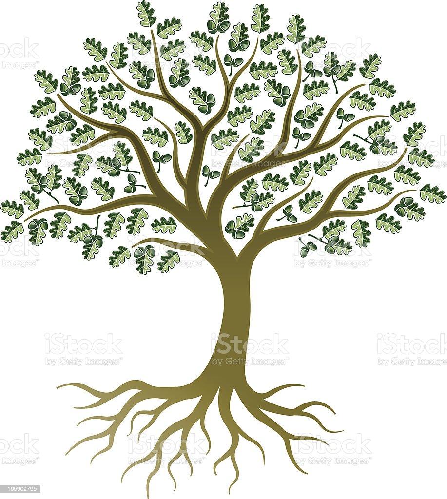 Little oak tree royalty-free stock vector art