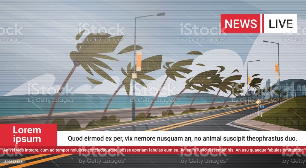 Live TV Broadcast Of Tornado Incoming From Sea News About Hurricane In Ocean Huge Wind Destroy Palm Trees And Road Tropical Natural Disaster Concept vector art illustration