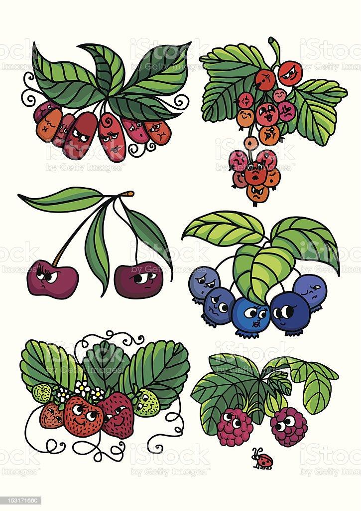 Living berries royalty-free stock vector art