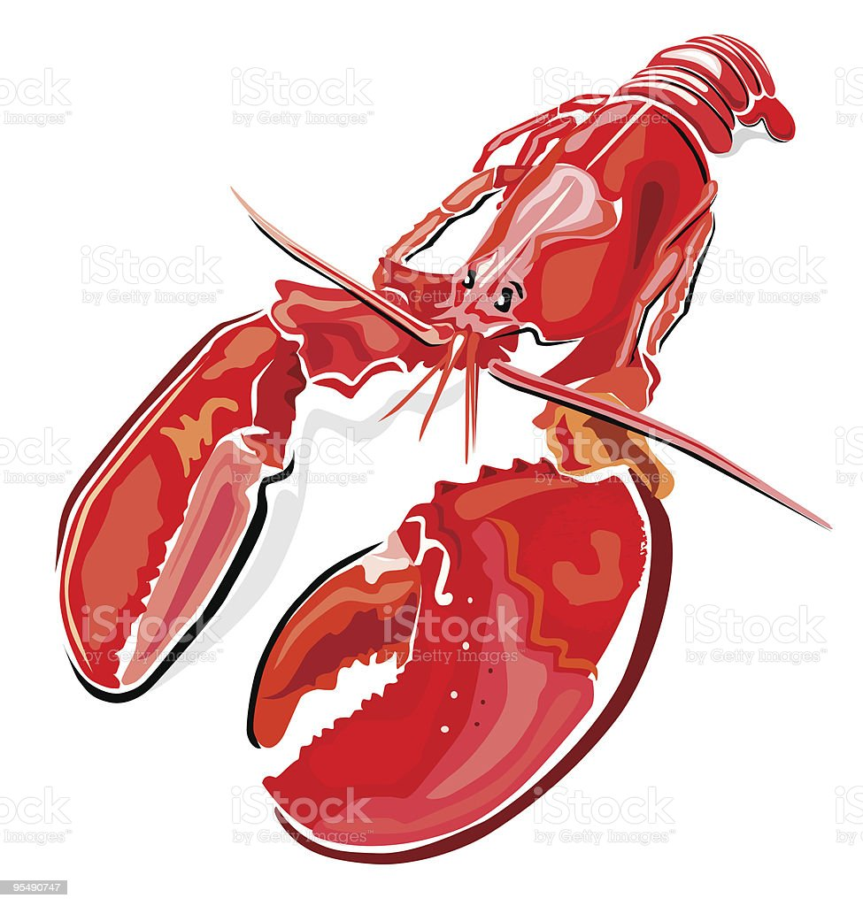 Lobster royalty-free stock vector art