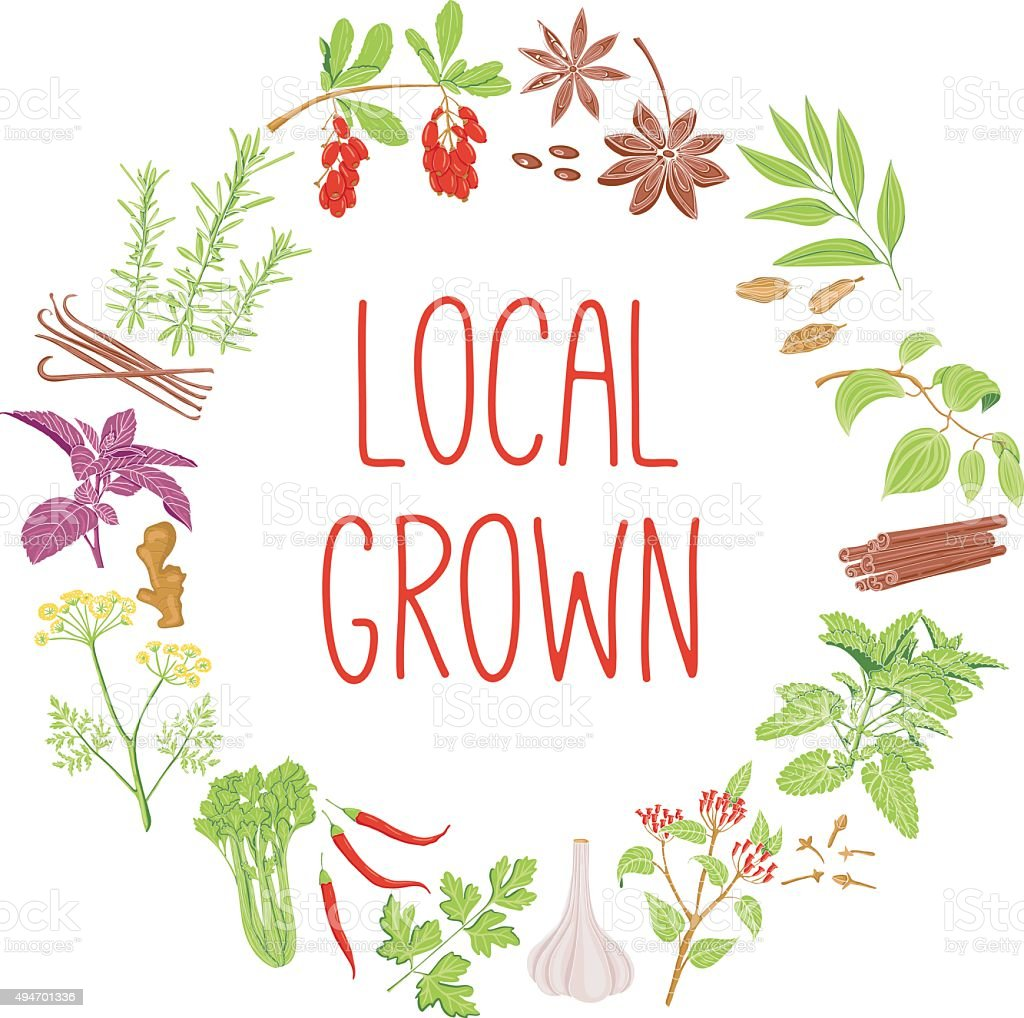 Local Grown vector concept. Healthy diet style illustration. vector art illustration