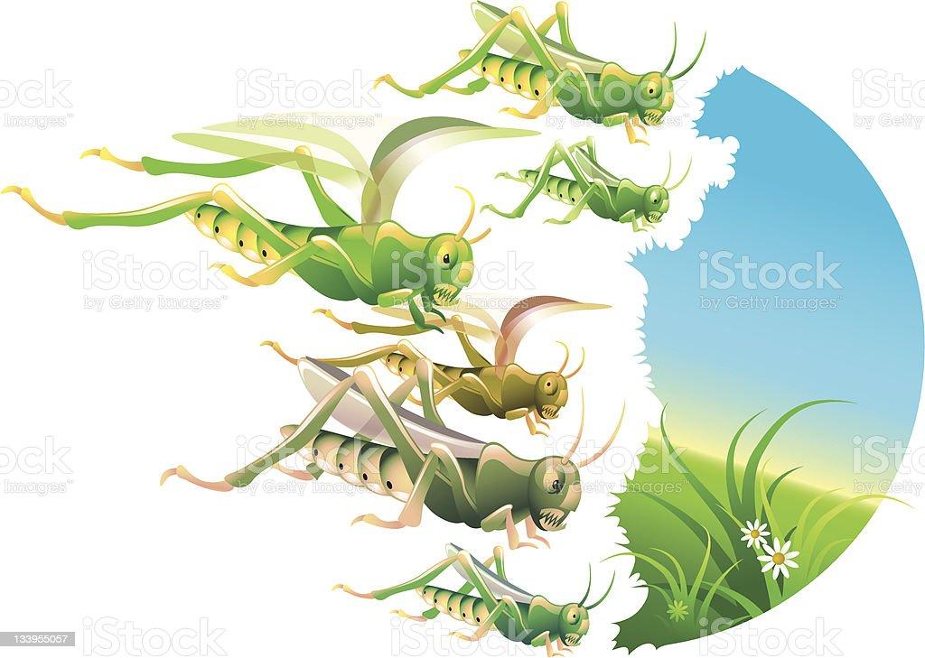 Locust Plague royalty-free stock vector art