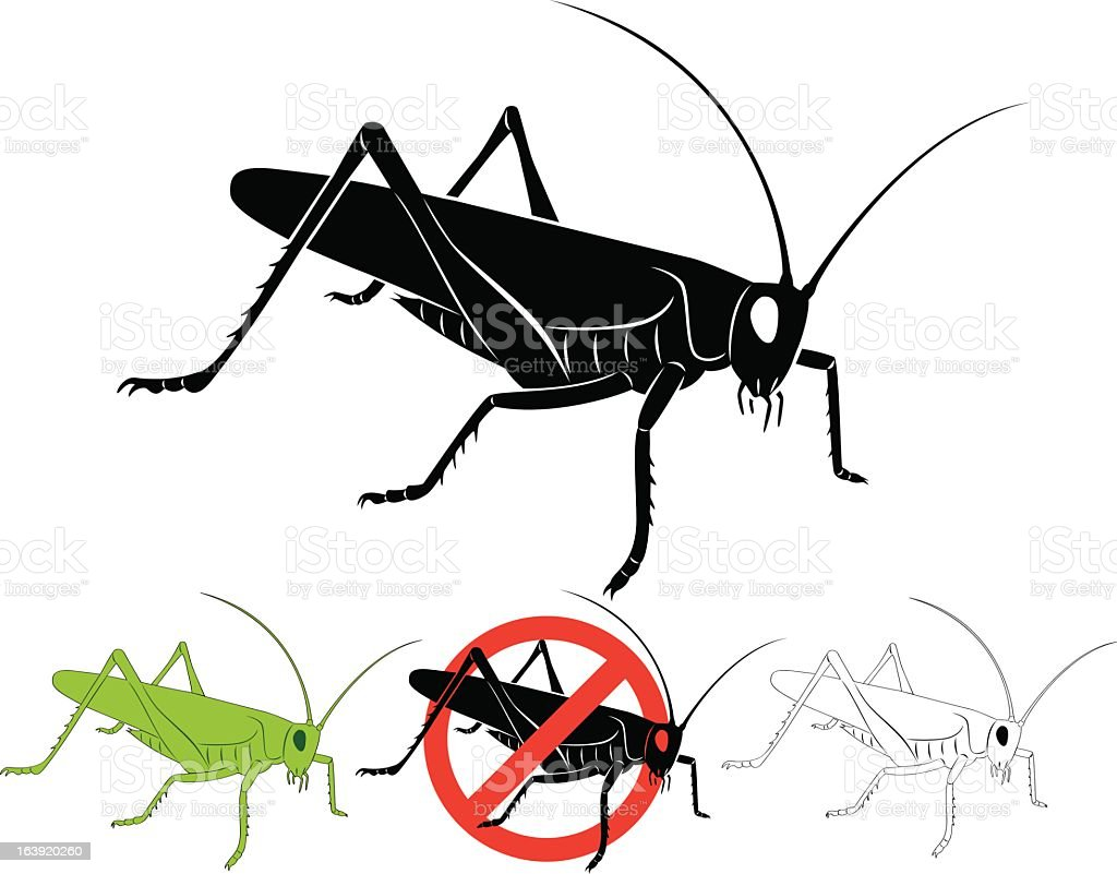 Locust royalty-free stock vector art