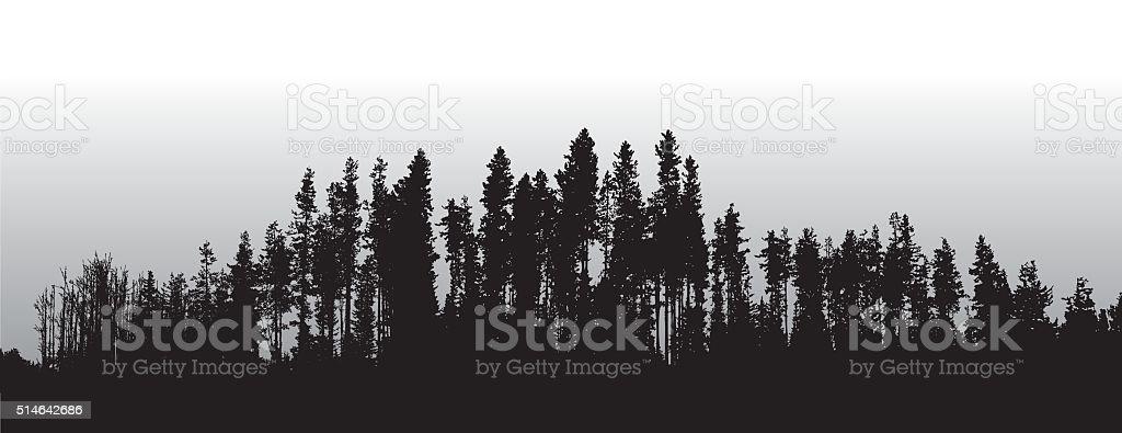 Lodge Pole Pines Treeline vector art illustration