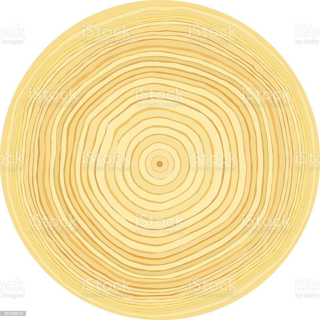 Tree Rings. Watercolour Illustration. Vector Hand Drawn Abstract ...